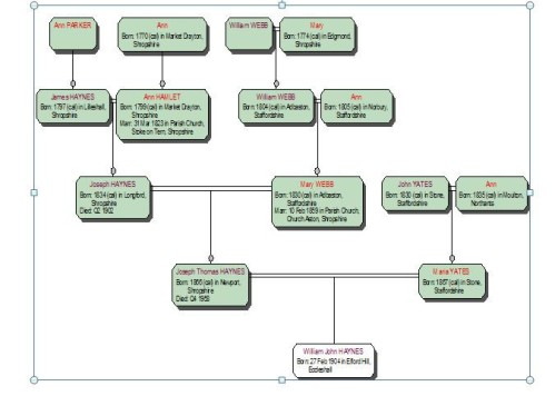 Haynes Family Tree