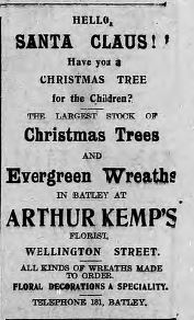 Kemps trees  11 Dec 1915