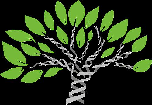 gene-tree-1490270_1280